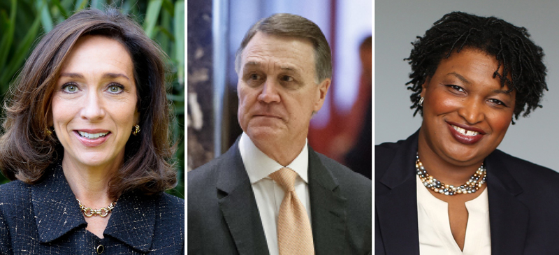 Will Teresa Tomlinson Be The One To Unseat David Perdue In 2020?